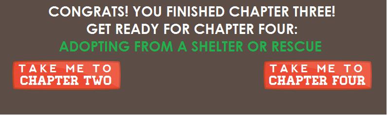 Chapter3Nav