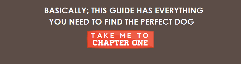 Basically this guide has everything you need to find the perfect dog - Take Me To Chapter One