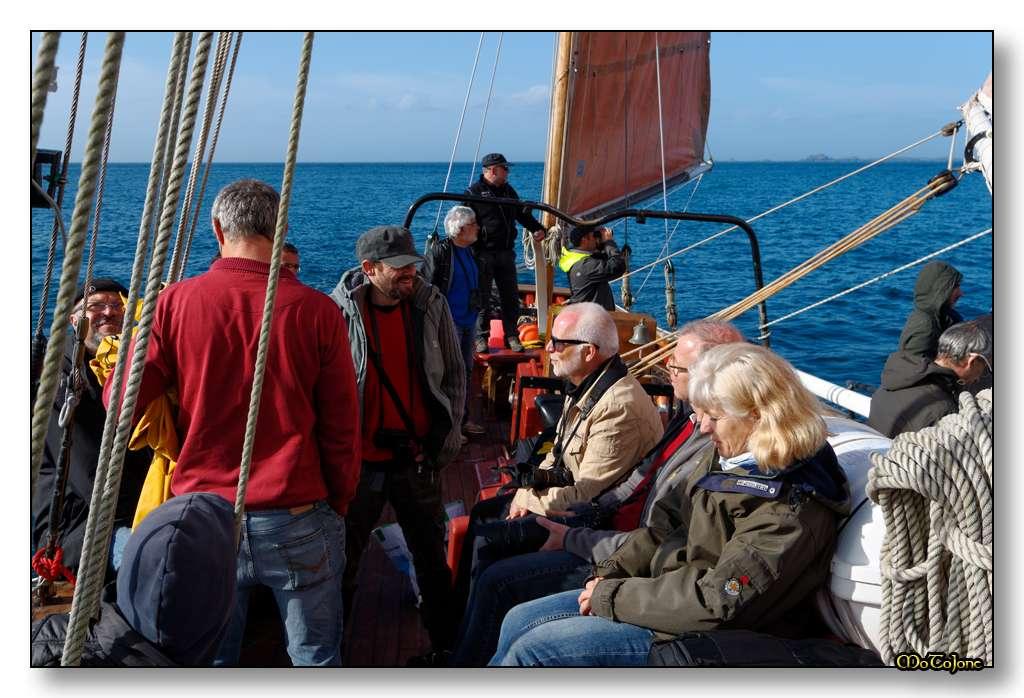 Sortie anniversaire Bretagne - 25 & 26 avril 2015 - Page 35 JDjsEF