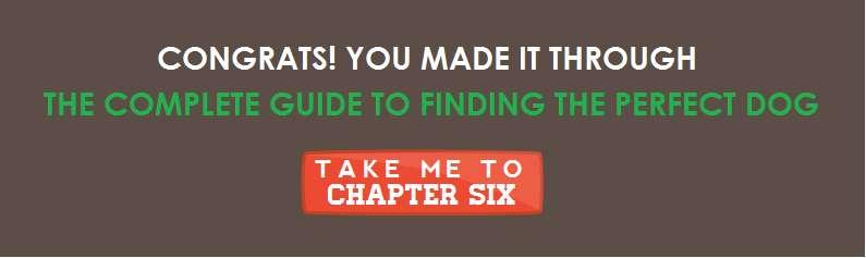 Chapter7Nav