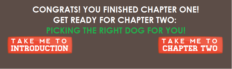 Congrats: You finished chapter one! Get ready for chapter two: Picking The Right Dog For You!