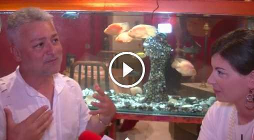 """გია ჯაჯანიძეს ინტერვიუ: """"მე მინდა ყველა ემიგრანტი ბედნიერი იყოს"""""""