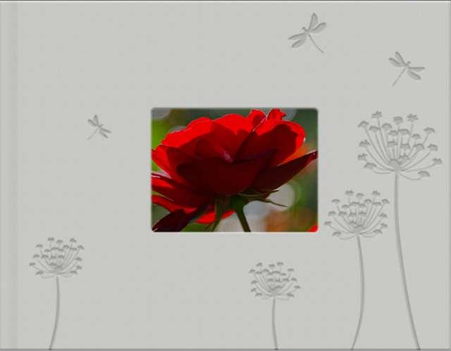 http://www.photobox.fr/creation/2482392911