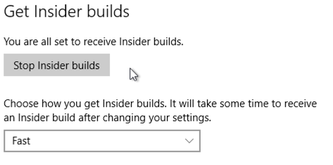 Windows Update Insider Builds fast ring