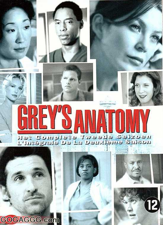 Grey's Anatomy | გრეის ანატომია