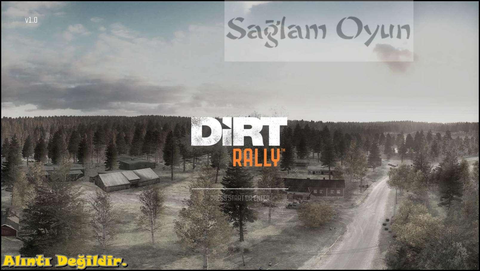 DiRT Rally 2015-1
