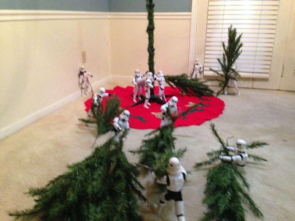 Des stormtroopers apportent branches du sapin de noel