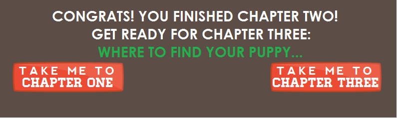 Congrats! You finished chapter two! get ready for chapter three: where to find your puppy...