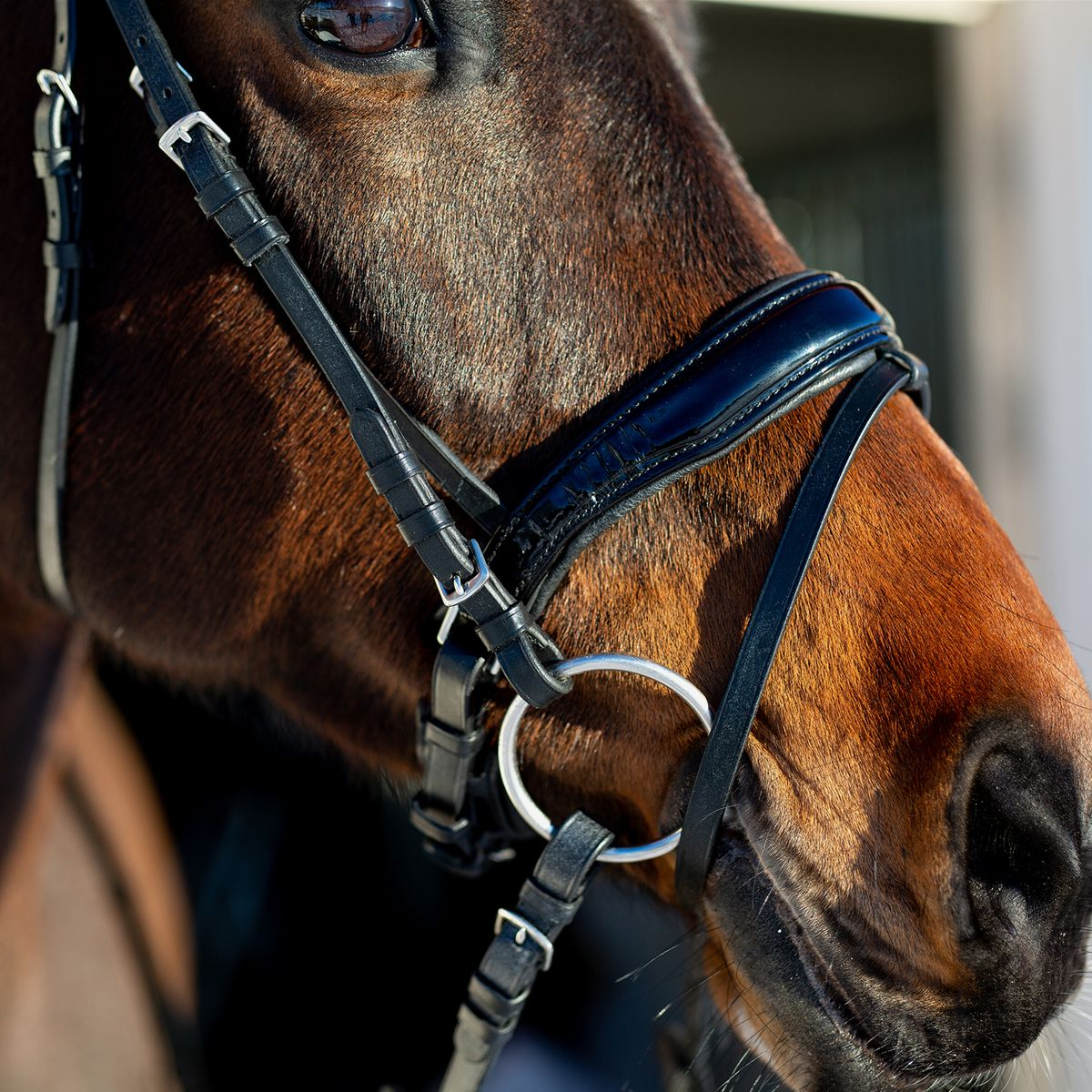Horze-Rohan-Leather-Curved-Padded-Snaffle-Bridle-with-Rhinestone-Browband miniature 11