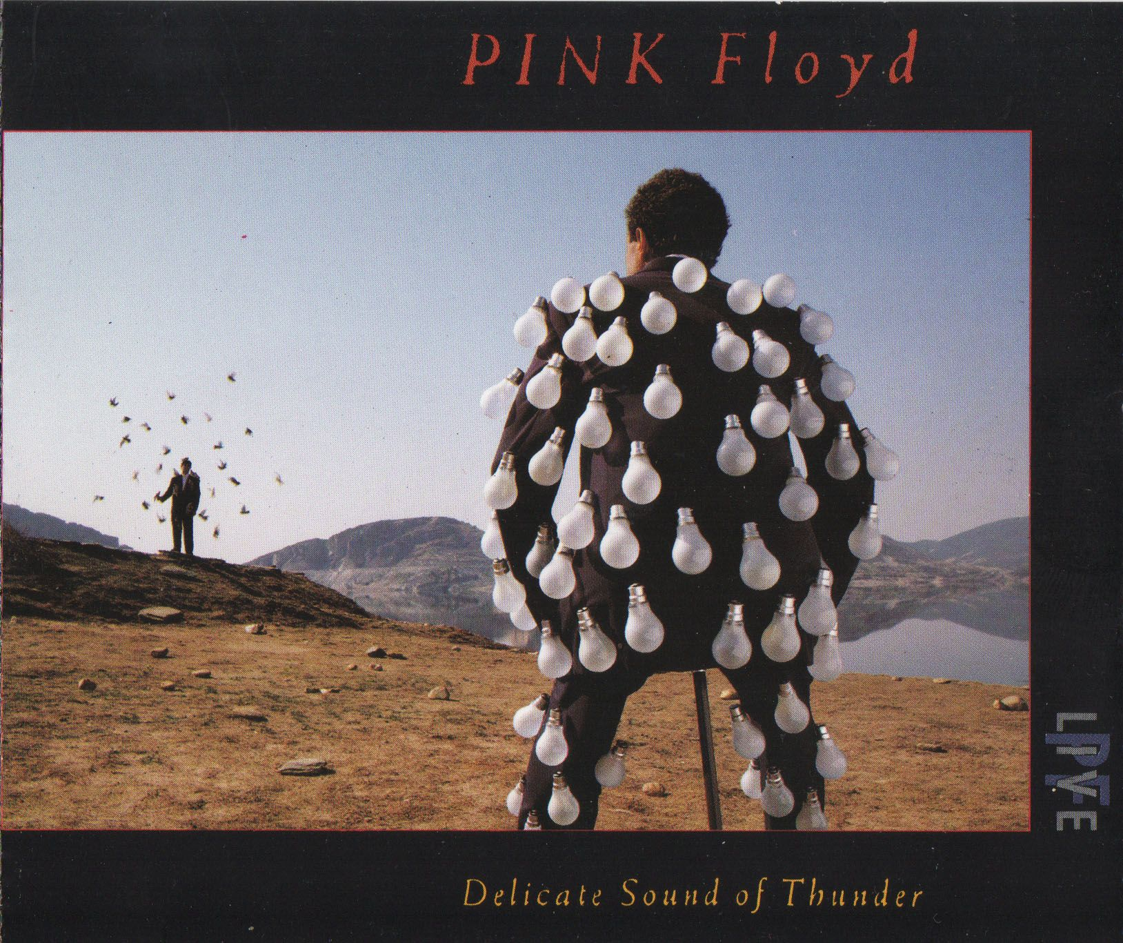 Pink Floyd - Delicate Sound of Thunder (1988) Flac
