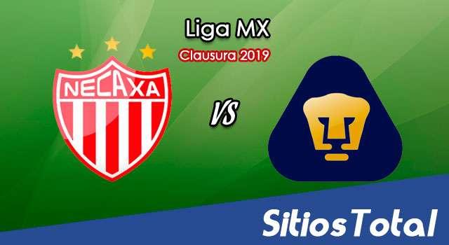 Ver Necaxa vs Pumas en Vivo – Clausura 2019 de la Liga MX