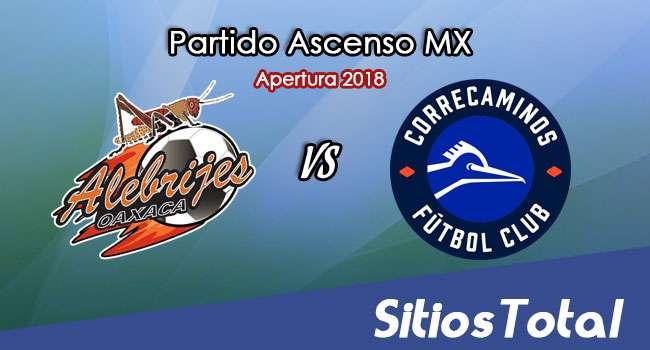 Ver Alebrijes de Oaxaca vs Correcaminos en Vivo – Ascenso MX en su Torneo de Apertura 2018
