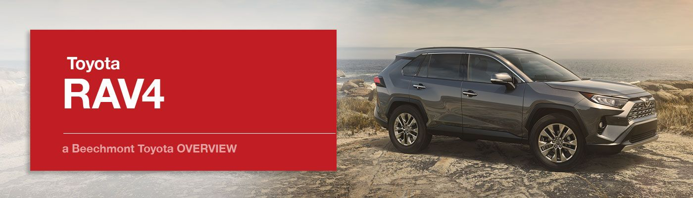 Toyota RAV4 Model Overview at Beechmont Toyota