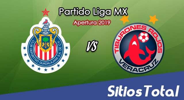 Ver Chivas vs Veracruz en Vivo – Apertura 2019 de la Liga MX