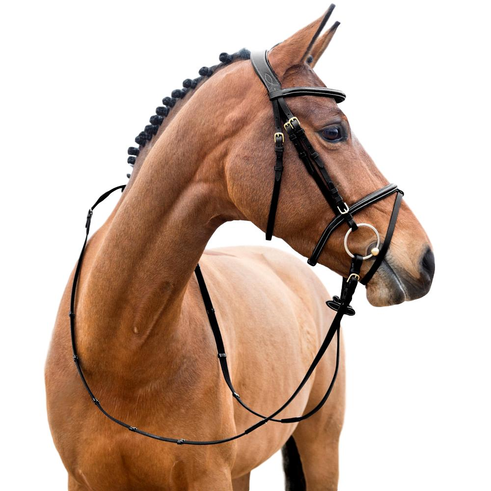 Horze-Constance-Bridle-Fancy-Stitching-with-Combined-Noseband-and-Web-Reins miniature 9
