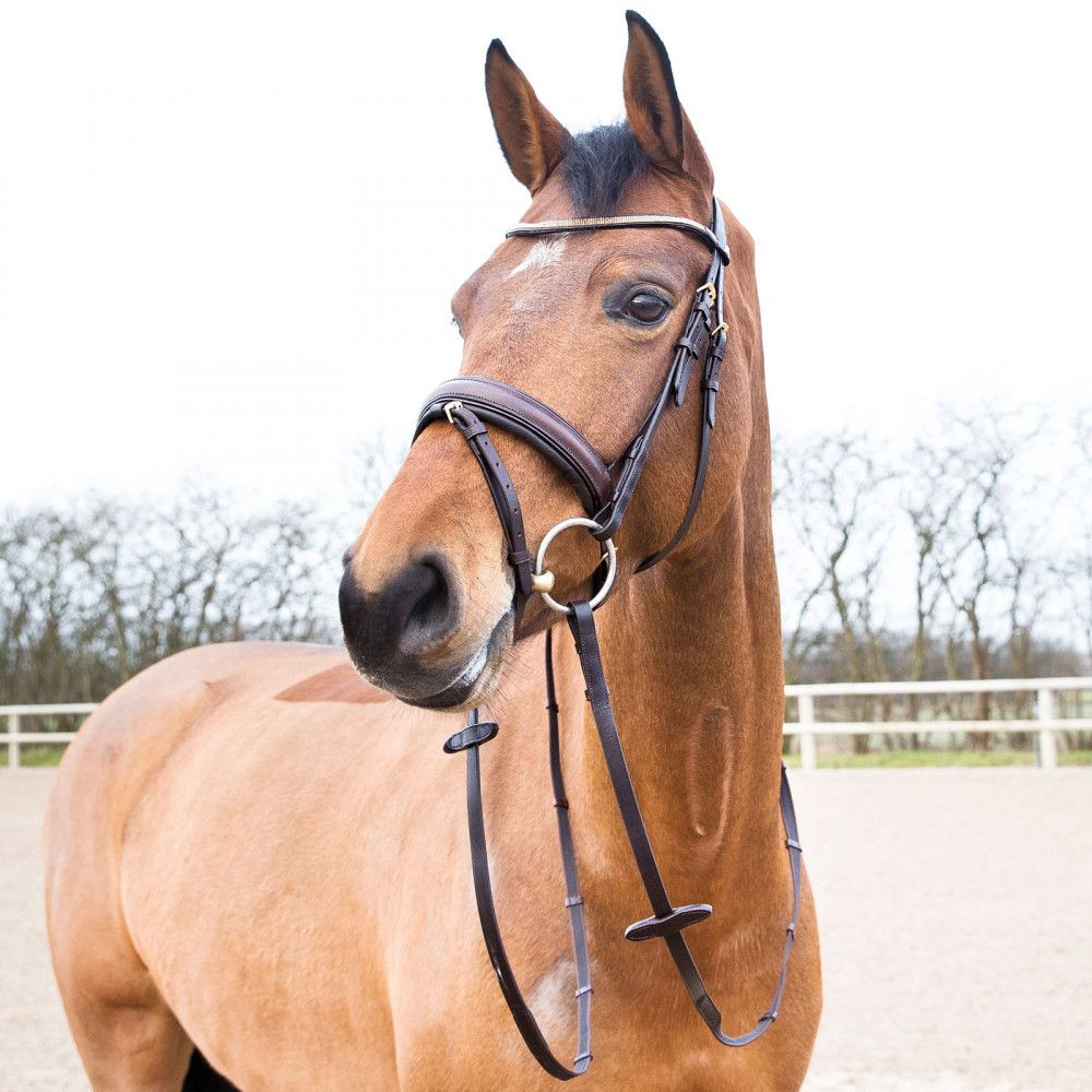 Horze-Crescendo-Lester-Snaffle-Bridle-with-U-Shaped-Browband-and-Anti-Slip-Reins miniature 15