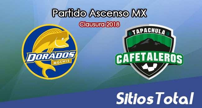 Dorados de Sinaloa vs Cafetaleros de Tapachula en Vivo – Ascenso MX – Sábado 3 de Marzo del 2018