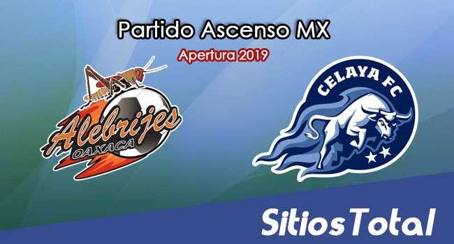 Ver Alebrijes de Oaxaca vs Celaya en Vivo – Semifinales Vuelta – Ascenso MX en su Torneo de Apertura 2019