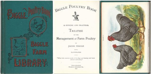 Biggle Poultry Book Treatise Management of Farm Poultry Illustrated HC, Jacob Biggle