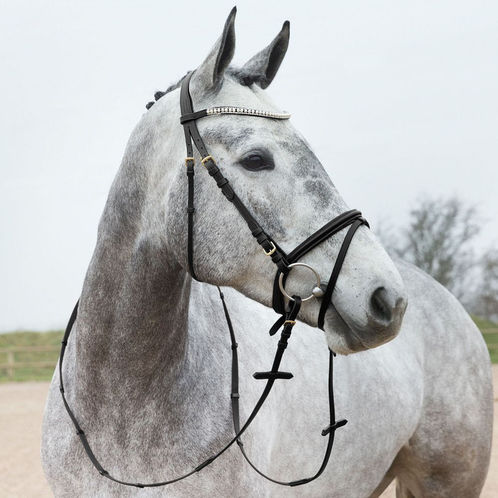 Horze-Trajan-Leather-Snaffle-Flash-Bridle-with-Narrow-Browband-and-Reins miniature 13