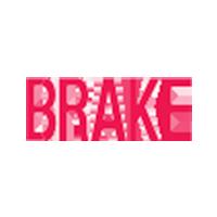 Brake System/Parking Brake