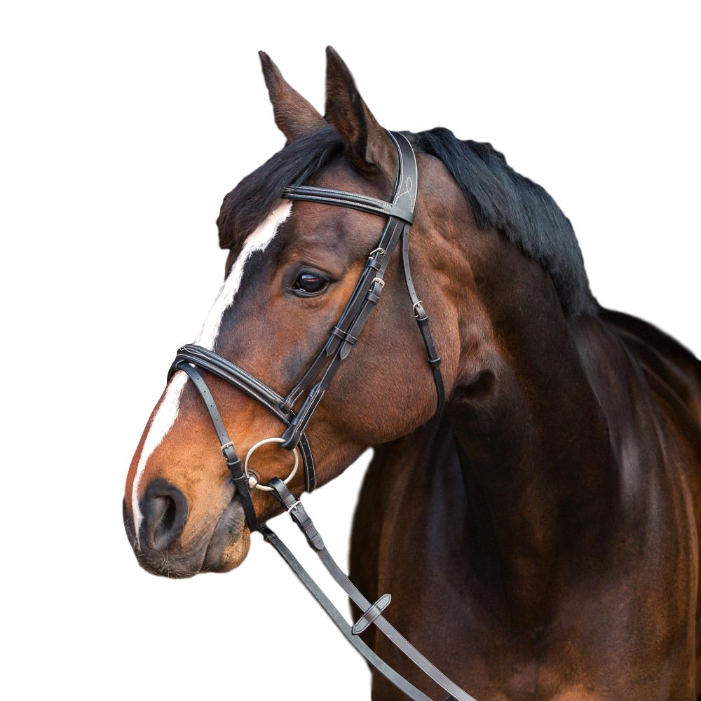 Horze-Constance-Bridle-Fancy-Stitching-with-Combined-Noseband-and-Web-Reins miniature 8