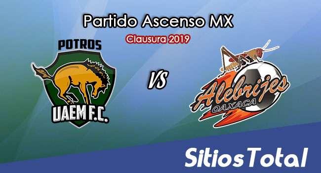 Ver Potros UAEM vs Alebrijes de Oaxaca en Vivo – Ascenso MX en su Torneo de Clausura 2019