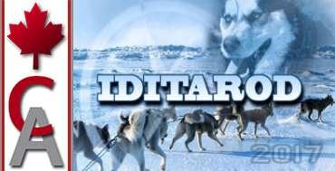2017 Iditarod Tour