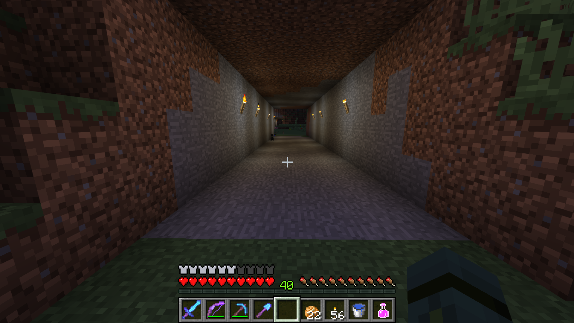 Journal And Pics To Catch A Wild Hare Survival Mode Minecraft