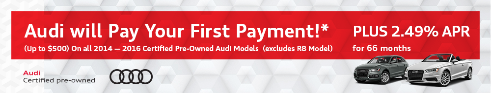 Audi Payment Waiver