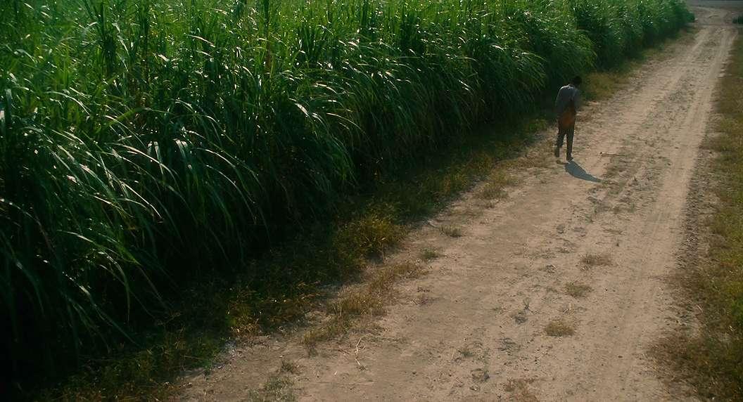 Liokajus / The Butler (2013)