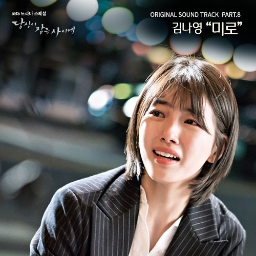 OST While You Were Sleeping Part. 8