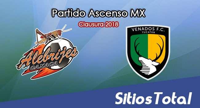 Alebrijes de Oaxaca vs Venados en Vivo – Ascenso MX – Sábado 10 de Febrero del 2018
