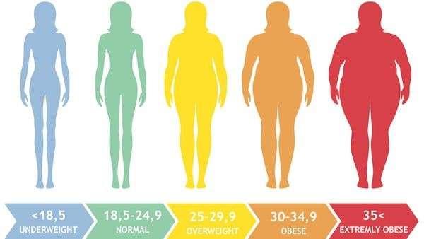 GAIN WEIGHT NATURALLY