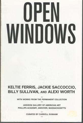 Open Windows Artists: Ferris, Saccoccio, Sullivan, Worth Exhibition Catalog, Carroll Dunham