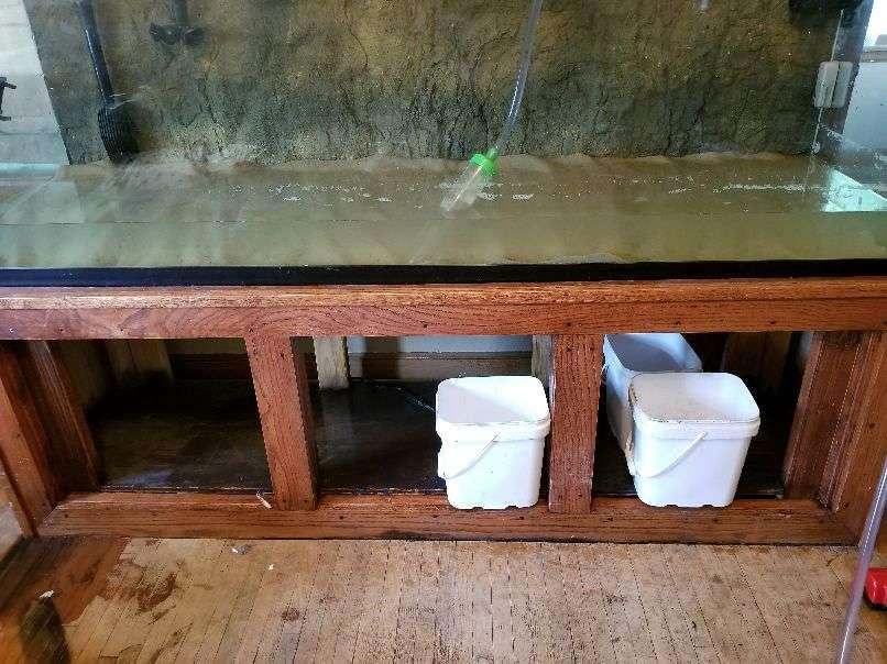 Minnesota Fish Keepers Forum • View topic - Tank Shot - 125 Gallon
