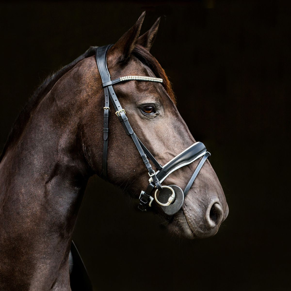 Horze-Rohan-Leather-Curved-Padded-Snaffle-Bridle-with-Rhinestone-Browband miniature 16