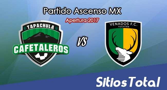 Cafetaleros de Tapachula vs Venados FC en Vivo – Online, Por TV, Radio en Linea, MxM – Apertura 2017 – Ascenso MX