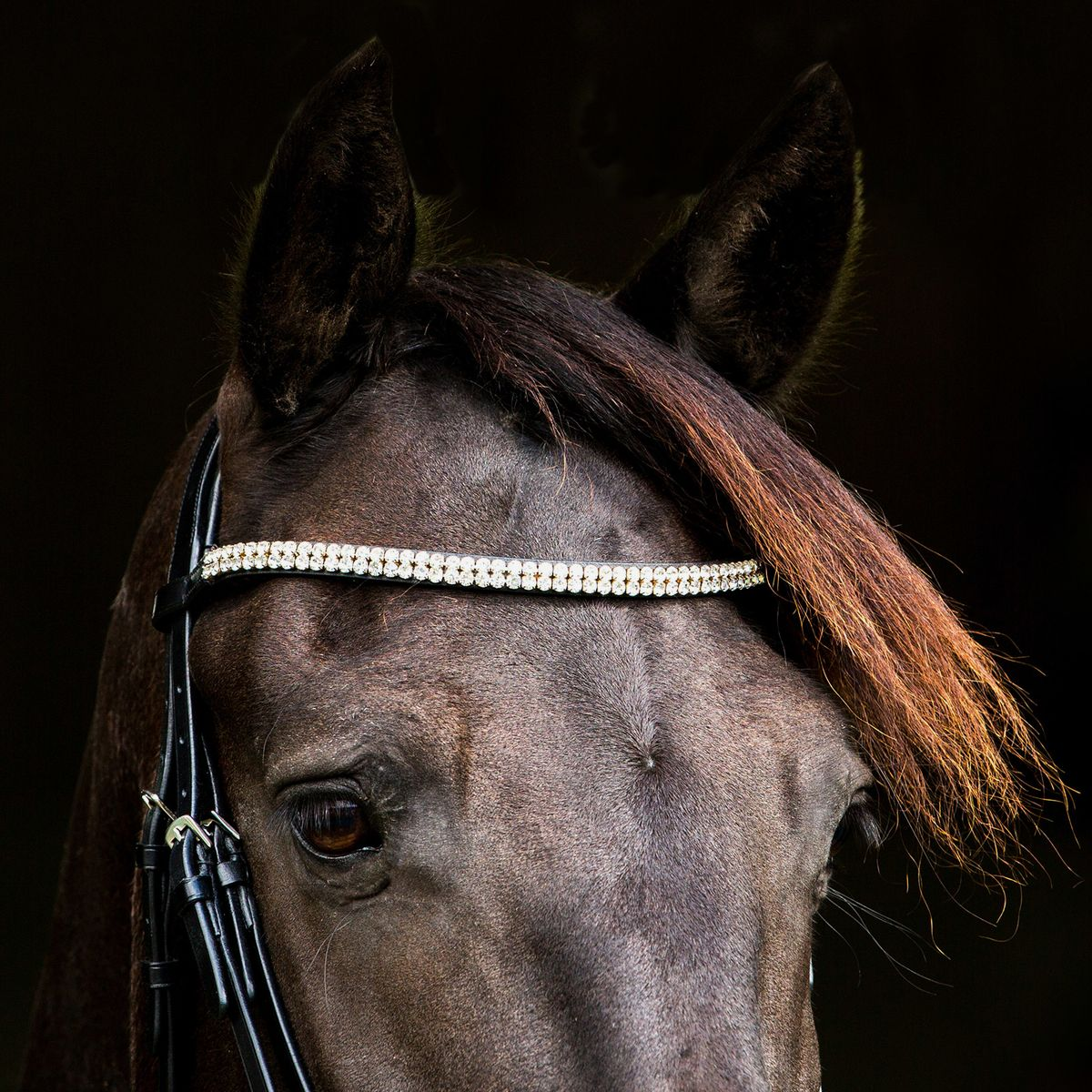 Horze-Rohan-Leather-Curved-Padded-Snaffle-Bridle-with-Rhinestone-Browband miniature 17