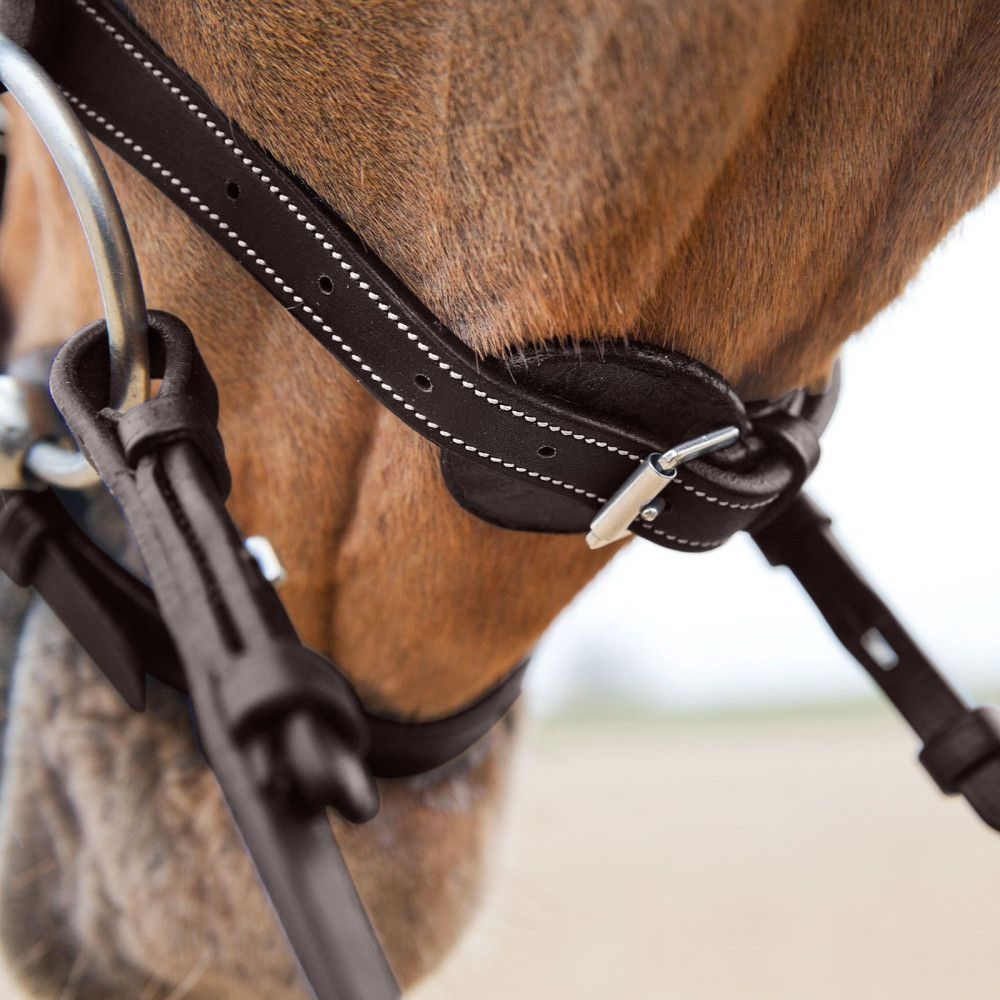 Horze-Supreme-Sparta-Snaffle-Bridle-with-Padding-and-Detachable-Flash miniature 15