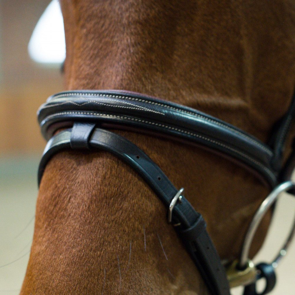 Horze-Supreme-Sparta-Snaffle-Bridle-with-Padding-and-Detachable-Flash miniature 9