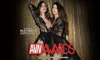 Awards | High Definition For Fun