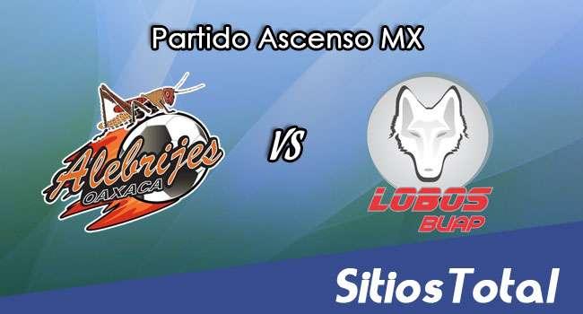 Alebrijes de Oaxaca vs Lobos BUAP en Vivo – Ascenso MX – Sábado 22 de Abril del 2017