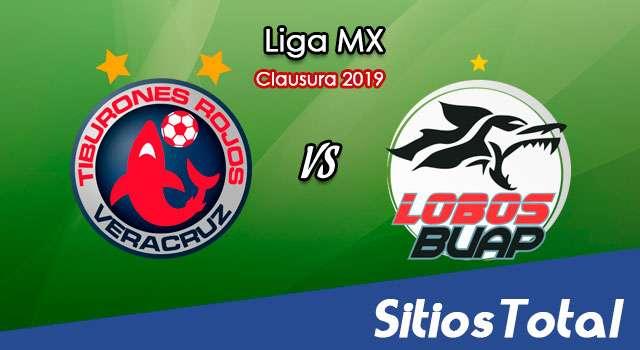 Ver Veracruz vs Lobos BUAP en Vivo – Clausura 2019 de la Liga MX