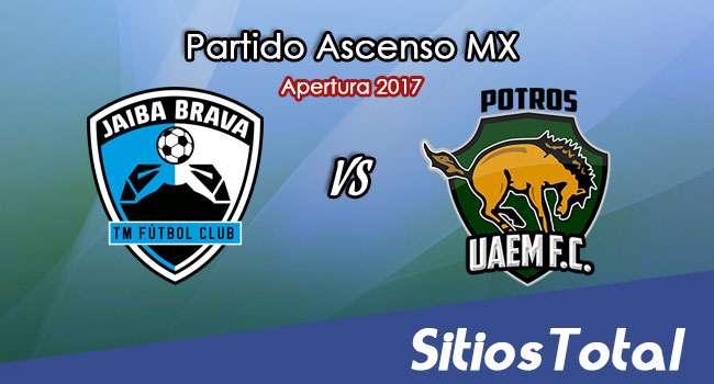 Tampico Madero vs Potros UAEM en Vivo – Online, Por TV, Radio en Linea, MxM – Apertura 2017 – Ascenso MX