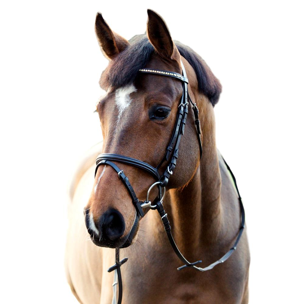 Horze-Spirit-Weston-Bridle-Narrow-Noseband-with-Flash-and-Web-Reins miniature 17
