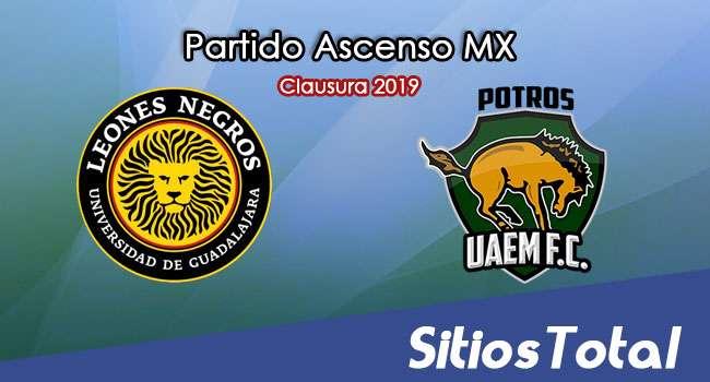 Ver Leones Negros vs Potros UAEM en Vivo – Ascenso MX en su Torneo de Clausura 2019