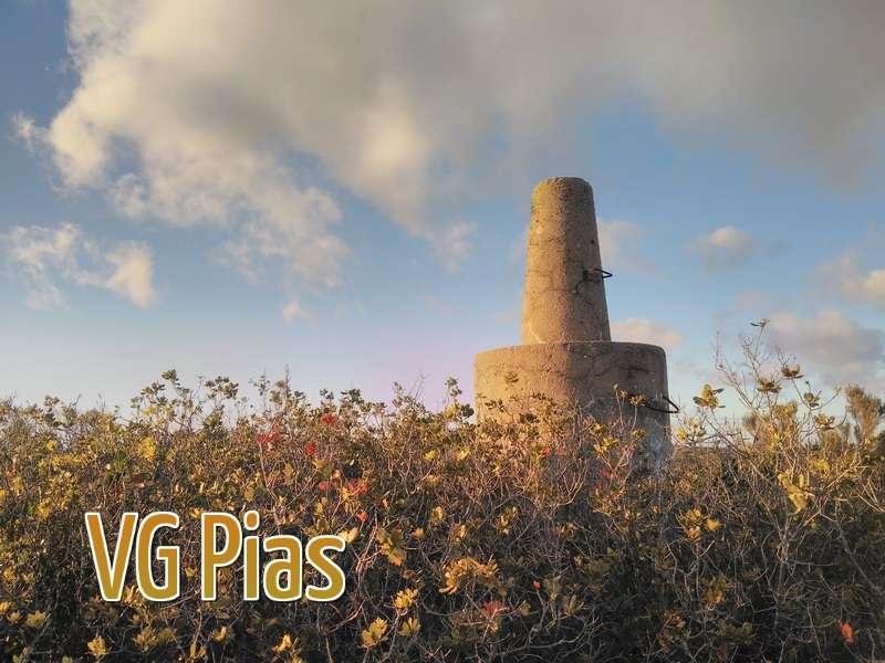 VG Pias