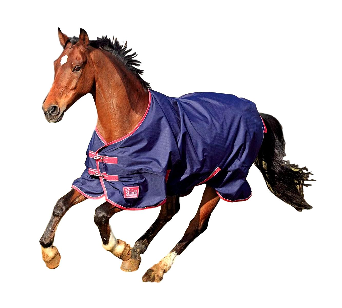 Shires Equestrian Tempest Blanket Lite Original Lite Blanket with 600D Ripstop Outer dd2f7f