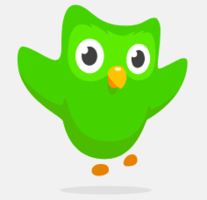 Duolingo Chinese Review